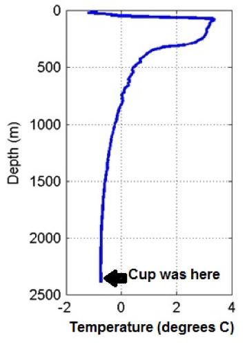 cupprof